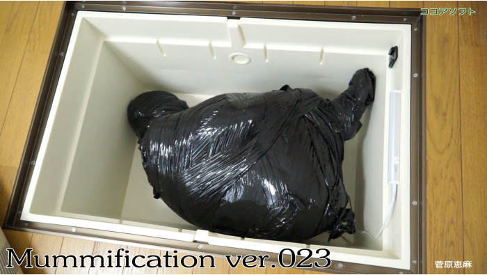 Mummification ver.023