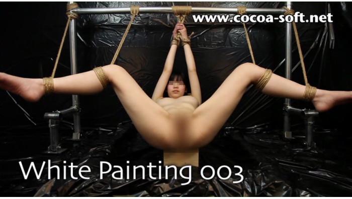 White Painting 003